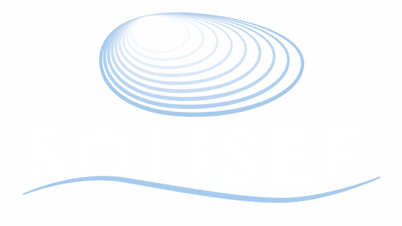 solisee_pysty_neg